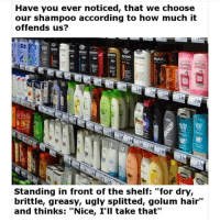 "Memes, Ugly, and Hair: Have you ever noticed, that we choose  our shampoo according to how much it  offends us?  oss  01  oss  VITAL EVITAL  82  299  279  Standing in front of the shelf:""for dry,  brittle, greasy, ugly splitted, golum hair""  and thinks: ""Nice, I'll take that"" Do NOT follow @jokezar if you're easily offended 😂"