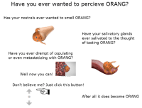 Click, Reddit, and Smell: Have you ever wanted to percieve ORANG?  Has your nostrals ever wanted to smell ORANG?  Have your salivatory glands  ever salivated to the thought  of tasting ORANG?  Have you ever drempt of copulating  or even metastatizing with ORANG?  Well now you can!  Don't believe me? Just click this button!  After all it does become ORANG [Src]