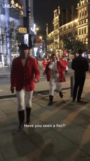 The 'Fox Hunt' is the ultimate stag-do game! Wait for it... 👀🍺!  CONTENTbible: Have you seen a fox?! The 'Fox Hunt' is the ultimate stag-do game! Wait for it... 👀🍺!  CONTENTbible