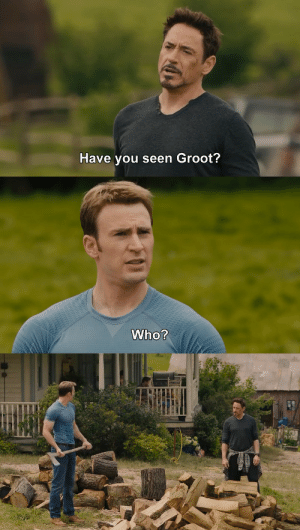 Have You Seen: Have you seen Groot?