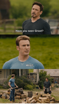 You, Oops, and Seen: Have you seen Groot? Oops