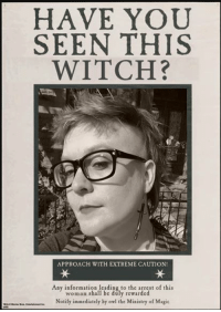 Another wannabe witch...: HAVE YOU  SEEN THIS  WITCH?  APPROACH WITH EXTREME CAUTION!  Any to the arrest of this  woman shall be duly rewarded  Notify immediately by owl the Ministry of Magic Another wannabe witch...