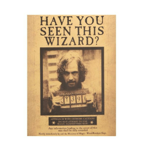 photograph regarding Have You Seen This Wizard Printable named 25+ Perfect Incorporate By yourself Discovered This Wizard Memes Not Memes, Consist of