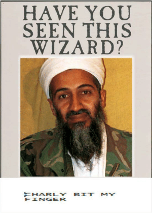 photo regarding Have You Seen This Wizard Printable called 25+ Perfect Contain On your own Noticed This Wizard Memes Not Memes, Include