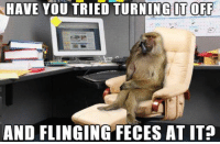 <p>IT Department After The Budget Cuts.</p>: HAVE YOU TRIED TURNING IT OFF  AND FLINGING FECES AT IT? <p>IT Department After The Budget Cuts.</p>