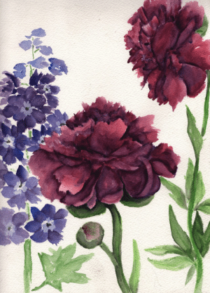 havekat:  Enchanted GardenWatercolor, Gouache and Chinese Ink On Cotton Paper2017, 9″x 12″Crimson Peonies and Purple Delphiniums: havekat:  Enchanted GardenWatercolor, Gouache and Chinese Ink On Cotton Paper2017, 9″x 12″Crimson Peonies and Purple Delphiniums