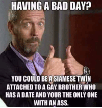 Gay Brother: HAVING A BAD DAY:  YOU COULD BEA SIAMESE TWIN  ATTACHED TO A GAY BROTHER WHO  HAS A DATE AND YOUR THE ONLY ONE  WITH AN ASS.