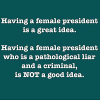 Memes, 🤖, and Idea: Having a female president  is a great idea.  Having a female president  who is a pathological liar  and a criminal.  is NOT a good idea. Never hillary!