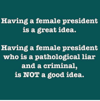 Memes, 🤖, and Pathology: Having a female president  is a great idea.  Having a female president  who is a pathological liar  and a criminal.  is NOT a good idea. Truer words have never been spoken