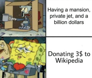 Its worth it: |Having a mansion,  private jet, and a  billion dollars  Donating 3$ to  Wikipedia Its worth it