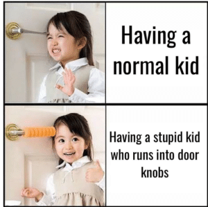 Stupid kids: Having a  normal kid  Having a stupid kid  who runs into door  knobs Stupid kids