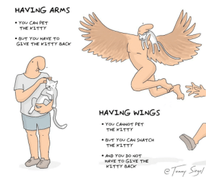 having arms vs having wings: a guide [OC]: HAVING ARMS  . YOU CAN PET  THE KITTY  BUT YOU HAVE TO  GIVE THE KLTTY BACK  CLe  HAVING WINGS  ·YOU CANNOT PET  THE KITTY  BUT YO CAN SNATCH  THE KITTY  AND YO DO NOT  HAVE TO GIVE THE  KLTTY BACK  ege having arms vs having wings: a guide [OC]