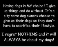 i give up: Having dogs is My choice I give  up things and do without. It's a  pity some dog owners choose to  give up their dogs so they don't  have to sacrifice their lifestyle.  I regret NOTHING and it will  ALWAys be about my dogs!