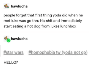 Tags: hawlucha  people forget that first thing yoda did when he  met luke was go thru his shit and immediately  start eating a hot dog from lukes lunchbox  hawlucha  #star wars  #homophobia tw_(yoda not op)  HELLO? Tags