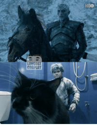 Dank, Hbo, and Winter: HBO  LOWCOST  COSPLAY Winter is coming