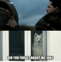Ghost deserves better! #GameOfThrones https://t.co/ArhniNKxgJ: HBO  ThronesMemes  DID YOU FORGETABOUT ME,JON? Ghost deserves better! #GameOfThrones https://t.co/ArhniNKxgJ