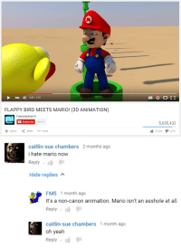 non canon: HD  0:31/1:53  FLAPPY BIRD MEETS MARIO! (3D ANIMATION)  FH  FuturisticHub  Subscribe  702,413  5,655,432  21322 2761  Add to  ShareMore   caitlin-sue chambers 2 months ago  i hate mario now  Reply . lự 1  Hide replies  FM5 1 month ago  It's a non-canon animation. Mario isn't an asshole at all.  Reply .  caitlin-sue chambers 1 month ago  Reply . יי  oh yesah