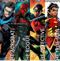 Memes, 🤖, and Bat: HE ACROBAT  HE ROGUE  HE DETECTIVE  HE TRUE SON  DAS Which Bat family member would you be?