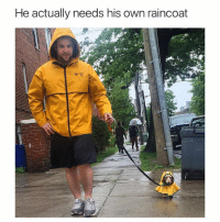 This is so adorable 😍😂 (@doggosdoingthings has good dogs pics): He actually needs his own raincoat This is so adorable 😍😂 (@doggosdoingthings has good dogs pics)