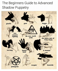 Cute, Funny, and Illuminati: he Beginners Guide to Advanced  Shadow Puppetry  osean speezy  @asleepinthemuseum  giraffe  goat  doggo  two  racoons  fighting  the new world  order  the entire cast of  Twin Peaks  wu-tang  human  hand  6 bananas  oxygen  homicide  pentagram Throwback to my favorite meme ever (collab with @asleepinthemuseum 👉🏼 follow the Tasmanian Princess @asleepinthemuseum) • • • puppet puppets shadowpuppets puppetry wutang twinpeaks pentagram illuminati guide chart meme memes memesdaily picoftheday photooftheday seanspeezy instagood dankmemes cute love me funny parody photoshop lol thursday tbt throwbackthursday