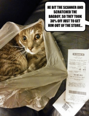 funnypics-blog:  No Returns Please: HE BIT THE SCANNER AND  SCRATCHED THE  BAGBOY, SO THEY TOOK  30% OFF JUST TO GET  HIM OUT OF THE STORE.  KOHLS funnypics-blog:  No Returns Please