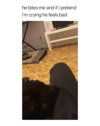 Bad, Crying, and Love: he bites me and if i pretend  i'm crying he feels bad manipulation level: love me