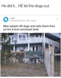 Dogs, Free, and Gifs: He did it.. HE let the dogs out  r/gifs  u/Loveinthemud 14h imgur  Man adopts 45 dogs and sets them free  on his 4 acre enclosed land. 😅😅😅😁
