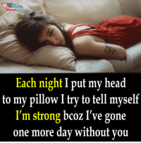 Head, Memes, and My Pillow: He  Each night I put my head  to my pillow I try to tell myself  I'm strong bcoz I've gone  one more day without you