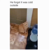 He forgot it was cold outside: He forgot it was cold  outside He forgot it was cold outside