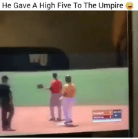 Im done 😂: He Gave A High Five To The Umpire Im done 😂
