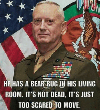Memes, Rugs, and 🤖: HE HAS A BEAR RUG IN HIS LIVING  ROOM. IT'S NOT DEAD, IT'S JUST  TOO SCARED TO MOVE www.AmericanAsFuck.com