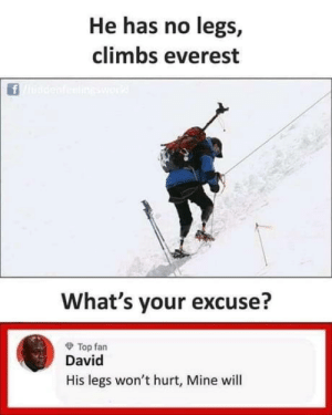 laughoutloud-club:  The legend brain: He has no legs,  climbs everest  ineswork  What's your excuse?  O Top fan  David  His legs won't hurt, Mine will laughoutloud-club:  The legend brain