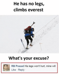 Memes, 🤖, and Everest: He has no legs,  climbs everest  What's your excuse?  RB Prasad His legs won't hurt, mine will  Like Reply Sounds legit