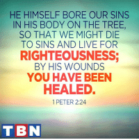 Memes, Eternity, and Righteousness: HE HIMSELF BORE OUR SINS  IN HIS BODY ON THE TREE,  SO THAT WE MIGHT DIE  TO SINS AND LIVE FOR  RIGHTEOUSNESS;  BY HIS WOUNDS  YOU HAVE BEEN  HEALEDE  1 PETER 2:24  T BN Jesus loves us so much made the ultimate sacrifice to give us eternal life.