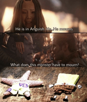 Monster, What Does, and What: He is in Anguish. He.. He mourns  What does this monster have to mourn?