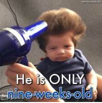 This baby has the most incredible head of hair!: He IS  O  www.bensound com This baby has the most incredible head of hair!