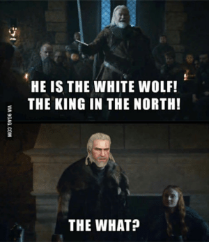 White, Wolf, and White Wolf: HE IS THE WHITE WOLF!  THE KING IN THE NORTH!  THE WHAT? (Spoiler alert) This isnt Redania?