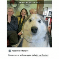 :) !!!!! - Max textpost textposts: He jumped into the shot  to  tastefullyoffensive  Moon moon strikes again. (via throat butter :) !!!!! - Max textpost textposts