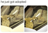Happy, Boy, and Got: he just got adopted <p>Happy boy</p>
