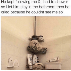 Shower, Forever, and Smile: He kept following me & I had to shower  so l let him stay in the bathroom then he  cried because he couldnt see me so ive seen this forever but it always makes me smile