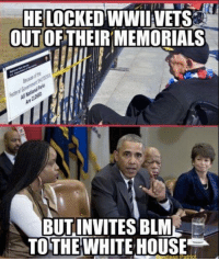 HE LOCKED WWII VETS  OUT OF THEIRMEMORIALS  BUT INVITES BLM  TO THE WHITE HOUSE Hangin with his niggas