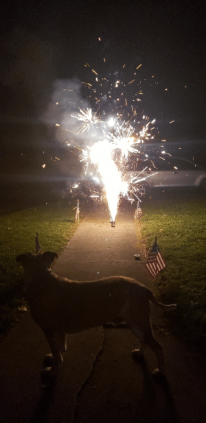 Fireworks, May, and Them: He may not have nuts but George Feeny isn't scared of fireworks on the contrary..He loves them!