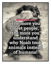 Animals, Memes, and Noah: he more vou  meet people,  the more vou  understand  why Noah took  animals instead  of humans!