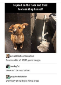 Af, Definitely, and Best: He peed on the floor and trie  to clean it up himself  proudblackconservative  Responsible af. 10/10, good doggo.  trashgOd  You can't be mad at him  psychedelicfelon  Definitely should give him a treat He did his best!