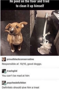 awesomacious:  I don't believe… but I really really want to.: He peed on the floor and tried  to clean it up himself  proudblackconservative  Responsible af. 10/10, good doggo  trashgOd  You can't be mad at him  psychedelicfelon  Definitely should give him a treat awesomacious:  I don't believe… but I really really want to.