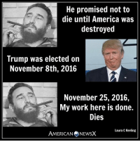 Memes, 🤖, and Destroyer: He promised not to  die until America Was  destroyed  Trump was elected on  November 8th, 2016  November 25, 2016,  My work here is done.  Dies  Laura C Keeling  AMERICAN NEWSX Trump accomplished Castro's mission [LK]