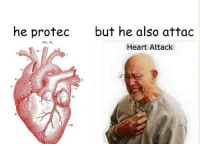 Flo, Heart, and Heart Attack: he protec  but he also attac  Flo. 87.  Heart Attack  C-  .B