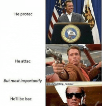 Funny, Love, and Memes: He protec  He attac  But most importantly  @bodybuilding_humour  He'll be bac .. 💥💥💥💥💥💥💥 . .. Arnold for world president.. 💥💥💥💥💥💥💥 FOLLOW US . ⬇️⬇️⬇️⬇️⬇️⬇️⬇️⬇️⬇️⬇️⬇️⬇️ 🔥🔥@bodybuilding_humour 🔥🔥 ⬆️⬆️⬆️⬆️⬆️⬆️⬆️⬆️⬆️⬆️⬆️⬆️ ... workout bodybuilding gymmemes crossfit strong motivation instalike powerlifting Quote quotes gymhumour deadlift squat bench love gymhumour funny joke legday instagood fitspo motivation girlswholift fitchick mma conormcgregor