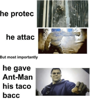 wholesome hulk: he protec  he attac  But most importantly  he gave  Ant-Man  his taco  bacc wholesome hulk