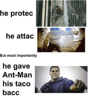 I need a Hulk Friend: he protec  he attac  But most importantly  he gave  Ant-Man  his taco  bacc I need a Hulk Friend
